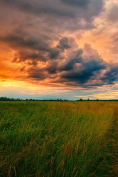 Sunset by Alexander Novikov