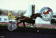 Ourasi, winner of the famous Prix d Amerique horse racing at Paris Vincennes racecourse on January 28, 1990 in Paris, France