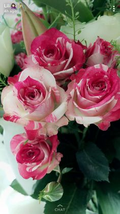 Beautiful Flowers Wallpapers, Beautiful Flowers Garden, Beautiful Flower Arrangements, Exotic Flowers, Amazing Flowers, Beautiful Roses, Pretty Flowers, Colorful Flowers, Lavender Roses