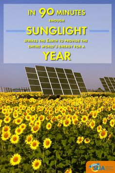 In 90 minutes, enough sunlight strikes the Earth to provide the entire world's energy for a year. - International Energy Agency