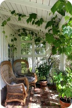 Cute porch. I'd get rid of those vines!