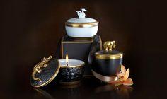 Luxury-Resources-Portal-Lobject-Luminescence