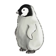 How to Draw a Baby Penguin -- via wikiHow.com