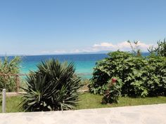 Luxurious minimalist, White Suites Resort in Afitos Halkidiki breathes purity and sophistication. Minimalist, Luxury, Beach, Water, Plants, Outdoor, Water Water, Outdoors, Aqua