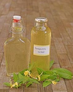 Honeysuckle Cordial - The Runaway Spoon (dreaming of summer! Canning Recipes, Wine Recipes, Cordial Recipe, Homemade Liquor, Natural Preservatives, Wine And Liquor, Summer Fruit, Summer Drinks, Edible Flowers