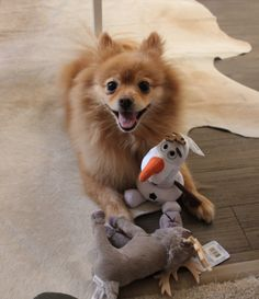 W/ a little help from Disney Frozen toys at PetSmart, your dog might want to build snowman!