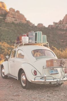 I think old VW Beetles are adorable! :-)  Though I don't know that I'd trust one on a roadie ;-)