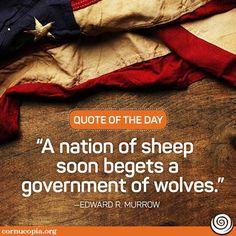 Quote of the day! Do you agree?      ----     Cornucopia Institute (@Cornucopia_Inst) | Twitter
