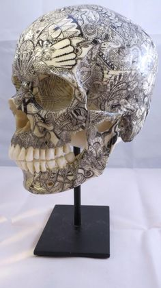 intricate skull with illustration side profile
