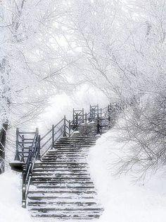 Paisaje de invierno.