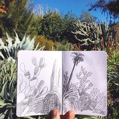 Sketching outdoors - Love this pencil illustration in a pocket notebook - Cotton & Flax
