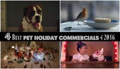 Need A SMILE? 4 Best Pet Holiday Commercials of 2016