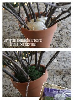 setting branches in pots using spray foam ~ Add some moss to the top of the foam add lights and there you have it! Cheap Christmas and wedding decor!