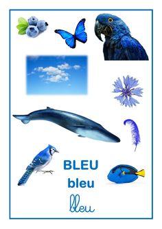 Référentiel d'Elisa Swaney bleu Montessori Activities, Color Activities, Baby Bike, File Folder Games, Kids Class, French Lessons, Stories For Kids, Science For Kids, Color Themes