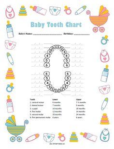 Alexandria W. Legget on | Best Baby teeth order, Baby teething ...