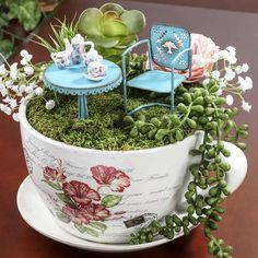 French Inspired Miniature Tea Cup Garden and Saucer Flower Planter