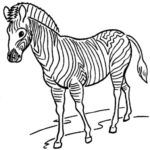 Here, you will find the collection of Free Zoo Animal Coloring Pages Printable. There unique sheets and pictures of different animals in HD quality. Zoo Animal Coloring Pages, Coloring Pages To Print, Colouring Pages, Coloring Pages For Kids, Coloring Sheets, Pictures Of Different Animals, Preschool Colors, Zoo Animals, Coloring Pages
