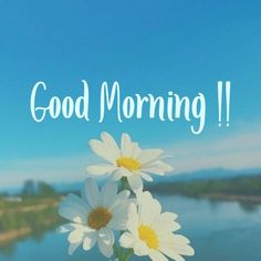 Cute Good Morning Quotes, Good Morning Cards, Good Morning Texts, Good Morning Inspirational Quotes, Good Morning Picture, Good Morning Messages, Good Morning Greetings, Good Morning Good Night, Good Morning Wishes