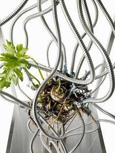 Botanical Sculpture #5 GOD:BOTANICA(×) 東 信 Blog:So-netブログ