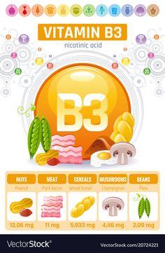 Nicotinic acid vitamin rich food icons healthy vector image on VectorStock Good Vitamins For Women, Vitamins For Skin, Vitamins And Minerals, Herbalife Nutrition, Health And Nutrition, Vitamin B3 Foods, Vitamin B Complex Benefits, Icon Set, Healthy Tips