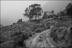 photos of ireland black and white - Google Search