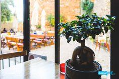 Υπό την σκιά των μεγάλων δέντρων 🌴 μπορείς να απολαύσεις το μεσημεριανό σου γεύμα ή ακόμα και τον απογευματινό σου καφέ!   :) Ξανά μαζί σας 21 Αυγούστου! :)