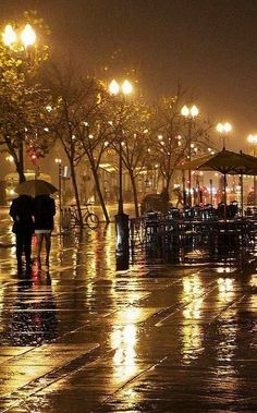 - The Next-Gen Social Network Cozy Rainy Day, Rainy Night, Beautiful Nature Wallpaper, Beautiful Gif, Rain Gif, City Rain, Rain Wallpapers, Autumn Rain, Winter Rain