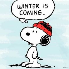 Winter is Coming: Snoopy + Game of Thrones = Perfect!