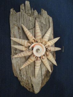 Decorative SUN on Beach Driftwood w/Sea Shell Art-Decor Nautical Ocean Patio #Unbranded #Nautical