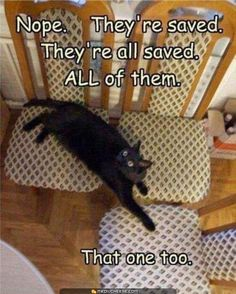 They're all saved! :)