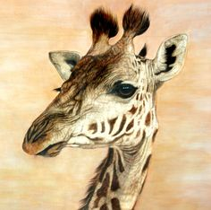 Animal art is always in vogue. Animal Paintings have always been popular. Nature art and Nature paintings have also been well appreciated.