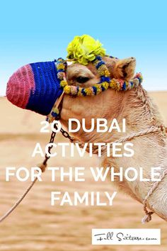 These Dubai activities will not just give you a taste of Middle East, but are also fun for the whole family. A small selection from the amazing variety of things to do in Dubai...