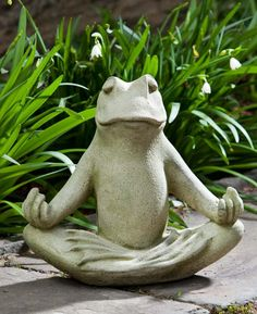 déco de petit jardin zen avec grenouille