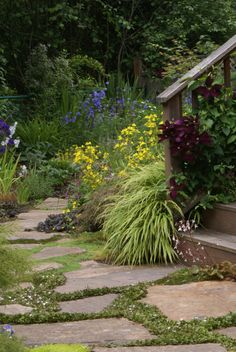 beautiful clematis and hakoechloa grass growing over a staircase railing by jacki-dee via www.pithandvigor.com
