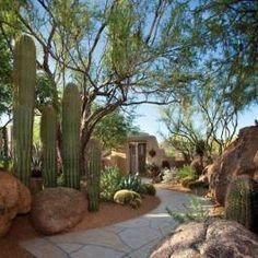 Desert landscapes...