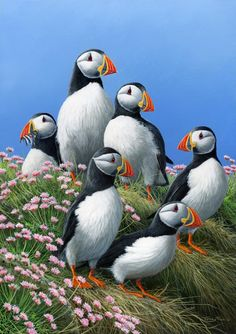 "<3 ""Puffins"" ~ by, Wildlife Artist, Jeremy Paul..I love these expressive birds. <3"