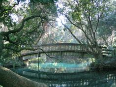 Juniper Springs is a beautiful natural oasis that every Floridian should experience at least once. Its location in Central Florida means it is accessible to almost anyone for an awesome road trip.