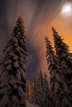 Snoqualmie Pass, Washington