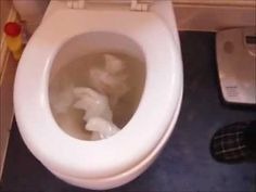 Sorry! Not very glam, but... if you need to unblock a toilet efficiently, this actually works