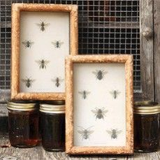 Bee Collection Shadowbox Set of 2    $22.00 @ http://www.antiquefarmhouse.com/current-sale-events/bumble-bee.html