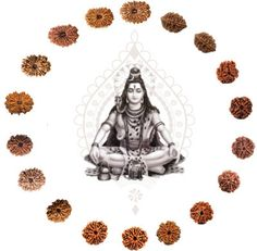 "Was ist ein ""Mukhi"" bei meinen Rudraksha's - beyondyoga. Shiva Shakti, Yoga Meditation, Blog, Health And Wellbeing, Spiritual, Keep Running, Beads, Faces, Blogging"