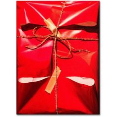 Trademark Fine Art Red Wrap Canvas Art by Roderick Stevens, Size: 35 x 47, Multicolor