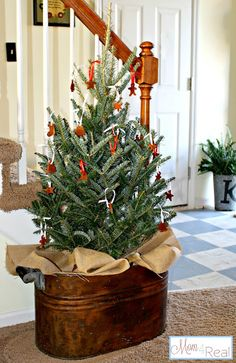 love this ... hang cinnamon ornaments on a tree by your home's entrance ... festive and fragrant!