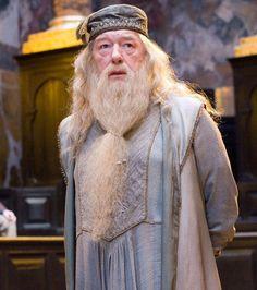 Le rôle d'Albus Dumbledore a failli appartenir à un barbu d'une autre saga...
