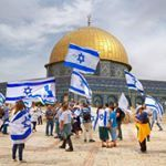 "1,398 Likes, 19 Comments - Our Jerusalem - ירושלים שלנו (@our_jerusalem) on Instagram: ""Good evening from Jerusalem ✡❤✡ Pic by: @framedworlds Chosen by: @sharongabay2 Tag: #our_jerusalem"""