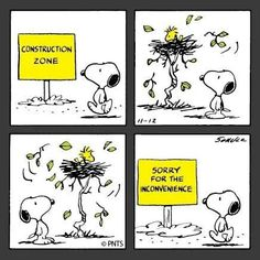 Snoopy_Woodstock's home is under contruction