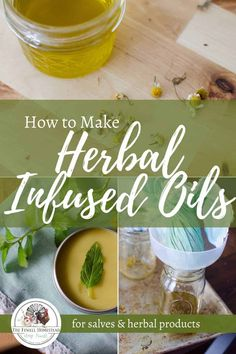 How to Make Herbal Infused Oil for Salves and Herbal Products