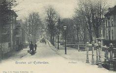 Gezicht in de Hoflaan, uit het noorden, vanaf de Viersprong. (datering: 1905, pbk 2881)