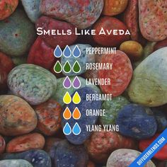 Smells Like Aveda with multiple oils — Essential Oil Diffuser Blend - with multiple oils Essential Oil Diffuser Blends, Doterra Essential Oils, Natural Essential Oils, Doterra Diffuser, Bergamot Essential Oil, Yl Oils, Young Living Oils, Young Living Essential Oils, Do It Yourself Food