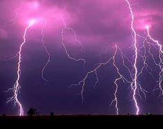 Purple Things - Bing Images